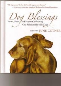 dog-blessings