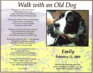 Emily's pet memorial from her caring vet