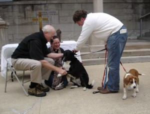 A Border Collie receives the minister's blessing